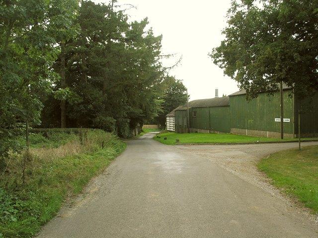 File:Street End, northeastern end - geograph.org.uk - 57187.jpg