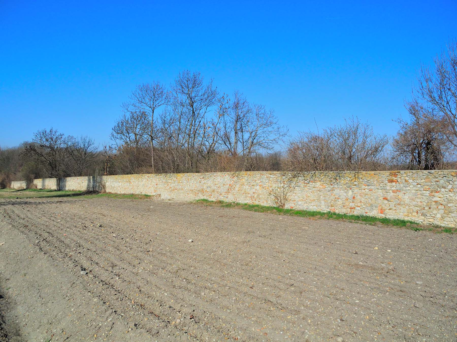 Dateitiergartenmauer 11533 In A 2404 Petronell Carnuntumjpg