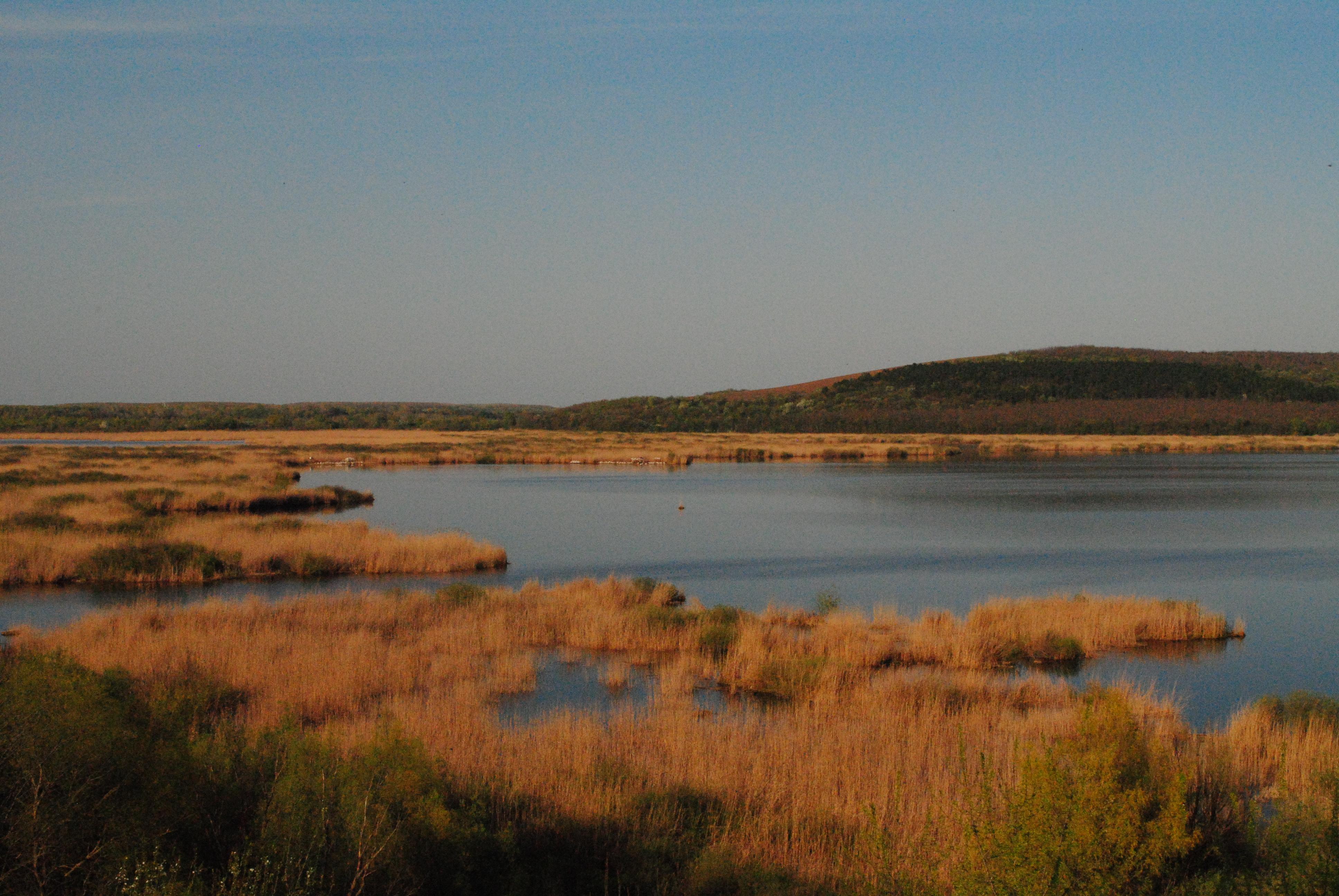 Rezervația naturală Srebărna