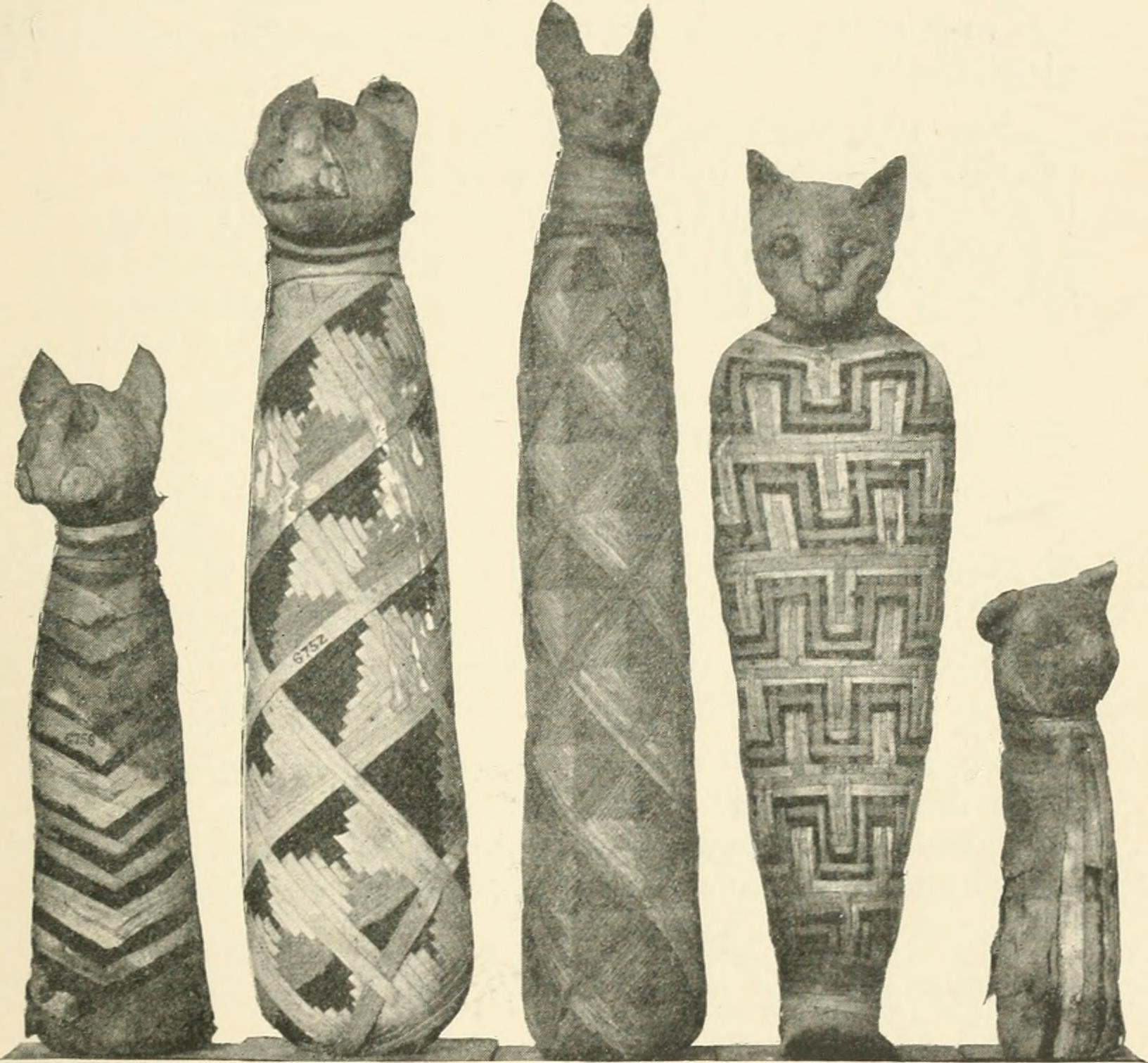 Cats in ancient Egypt - Wikipedia