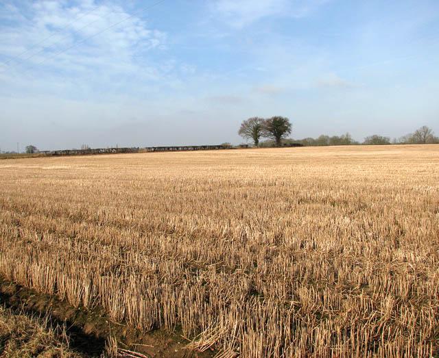 File:A stubble field - geograph.org.uk - 1140992.jpg