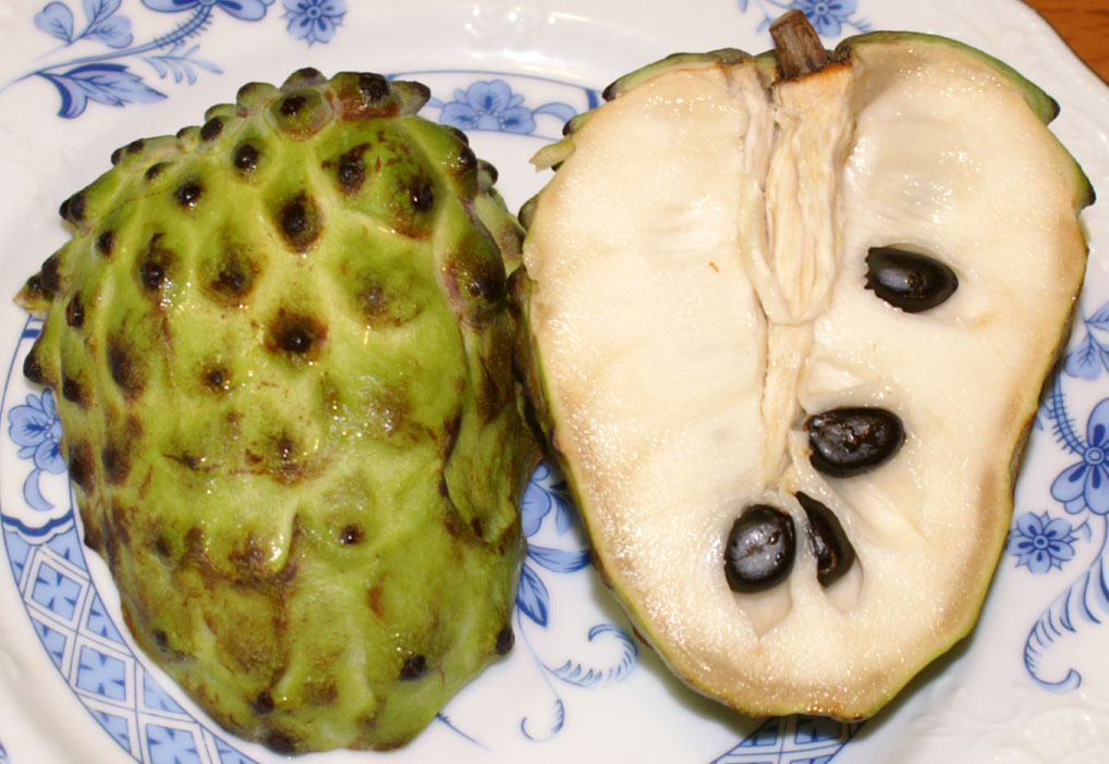 خبر عاجل : فاكهة الشيريمويا تقتل السرطان وتذيبه. انشر لعل الله يشفي بها مريض سرطان سبحان الله