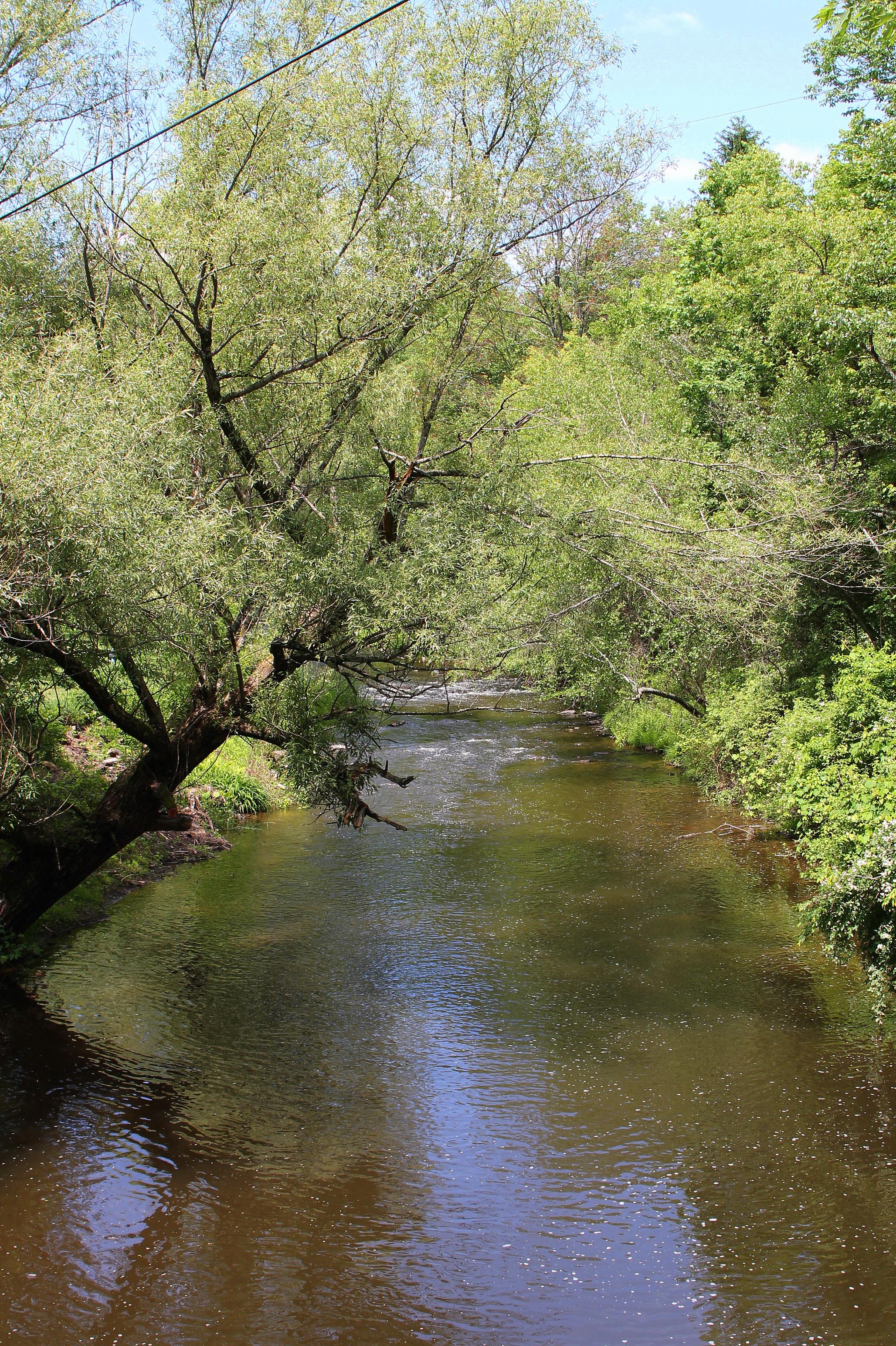 Big Wapwallopen Creek - Wikipedia