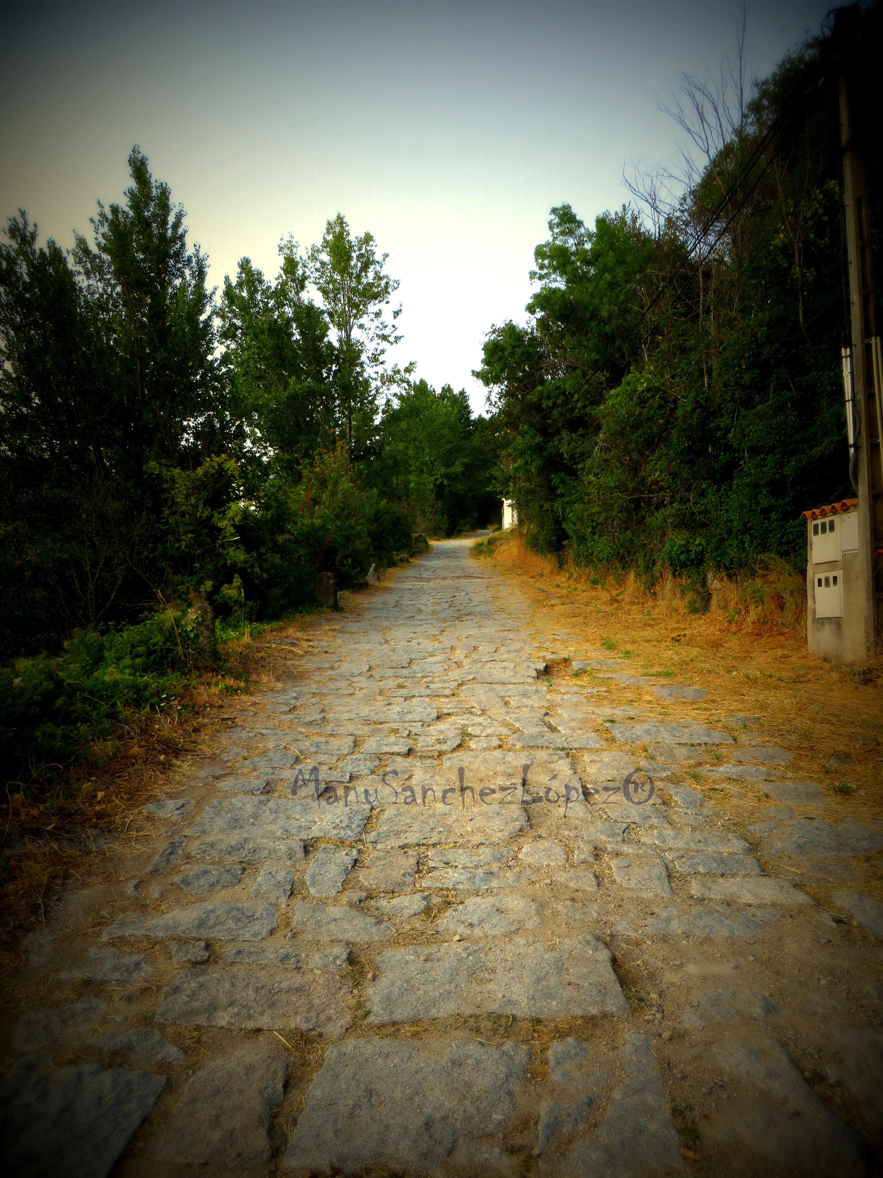 Baños Romanos De La Luisiana:Description Camino Romano Via de la Plata Baños de Montemayorjpg