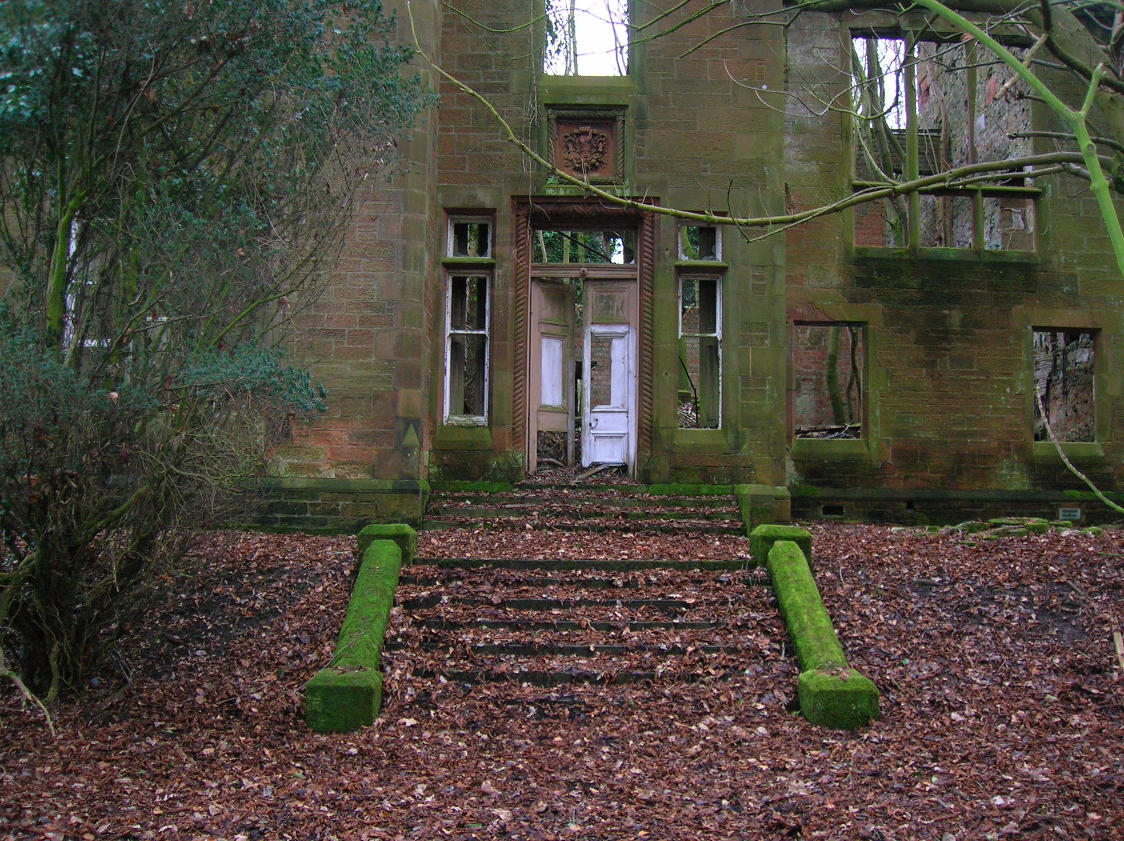 File Dalmore House  Front Door And Steps  Stair Jpg