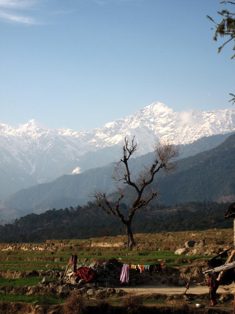 Fields and mountains near Bir Tibetan colony