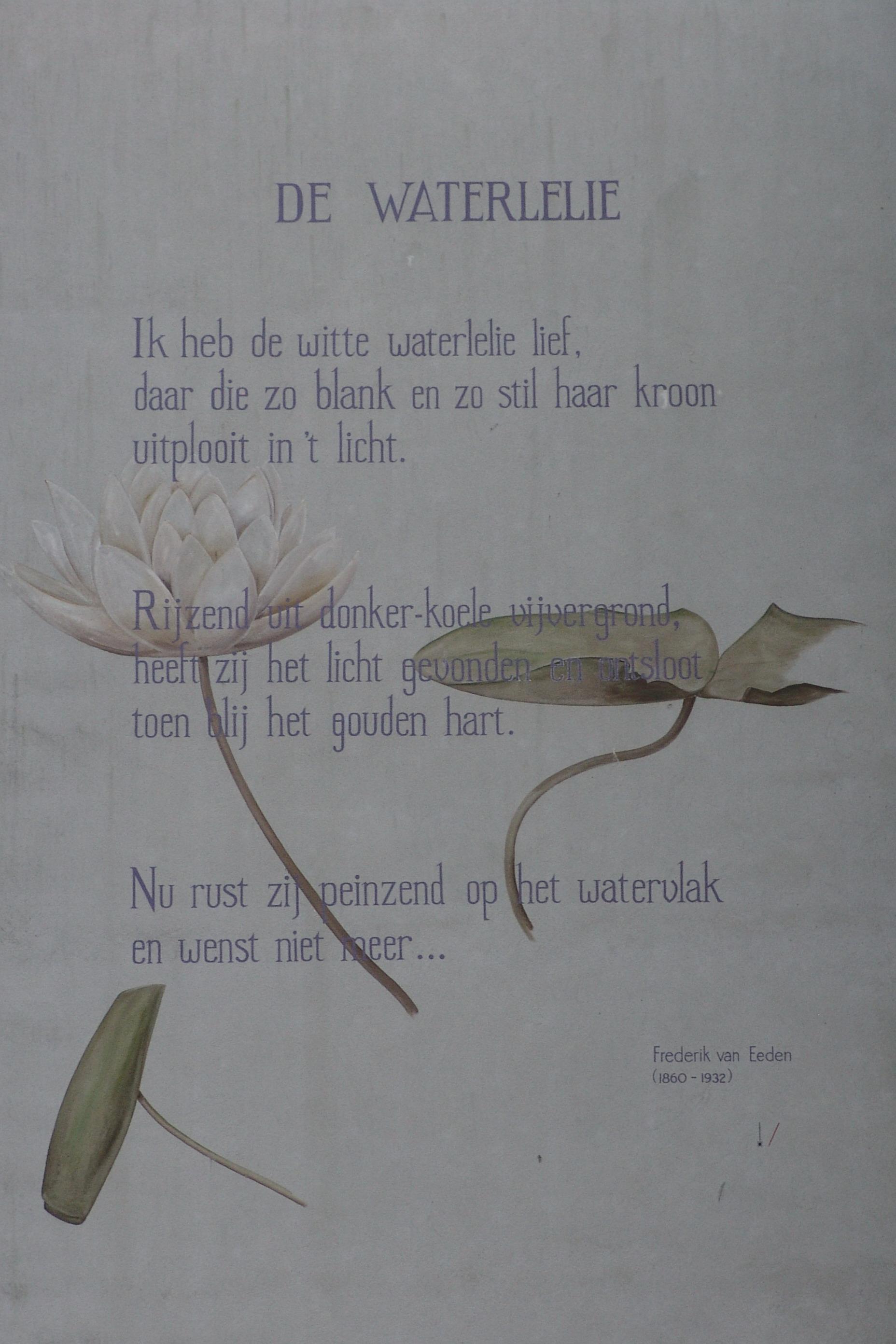 Filefrederik Van Eeden De Waterleliejpg Wikimedia Commons