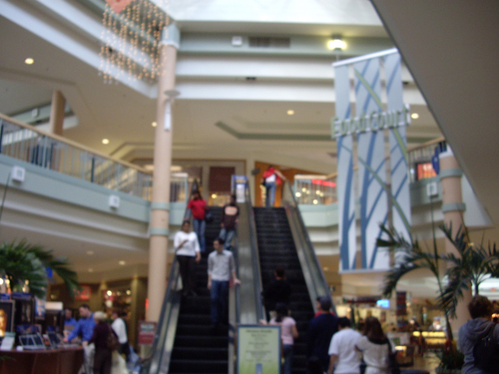 Hamilton Mall Wikipedia - Shopping malls america changed since 1989