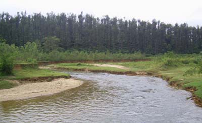 River Hemavati flowing at the southern side of Banakal