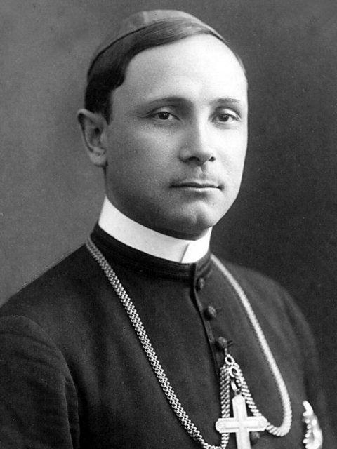 Iuliu Hossu - Wikipedia