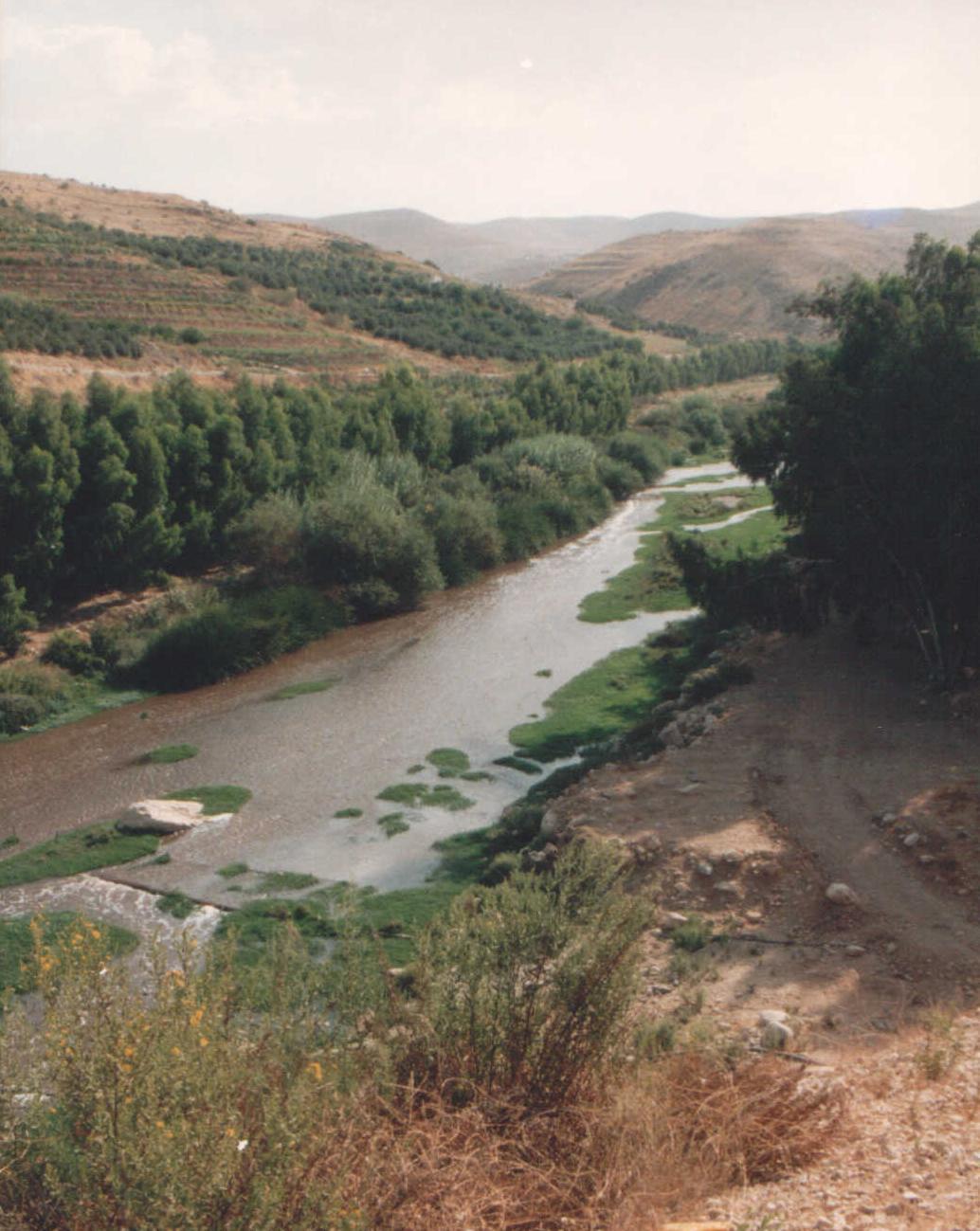 Zarqa (elv)