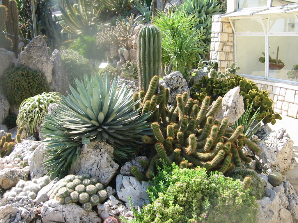 File jardin exotique de wikipedia for Jardin exotique