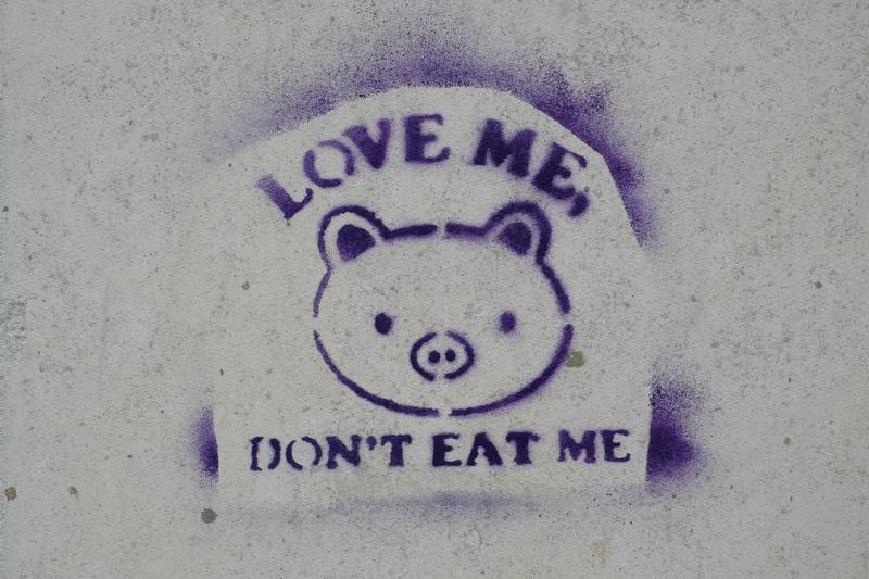 {{Information |Description={{fr|1=Pochoir en faveur du végétarisme, dans les rues du Mans. }} |Source=Photographie personnelle |Author=Nicolas Dessaux |Date=avril 2008 |Permission= |other_versions= }} {{ImageUpload|full}} Category:Pochoir [[Categor