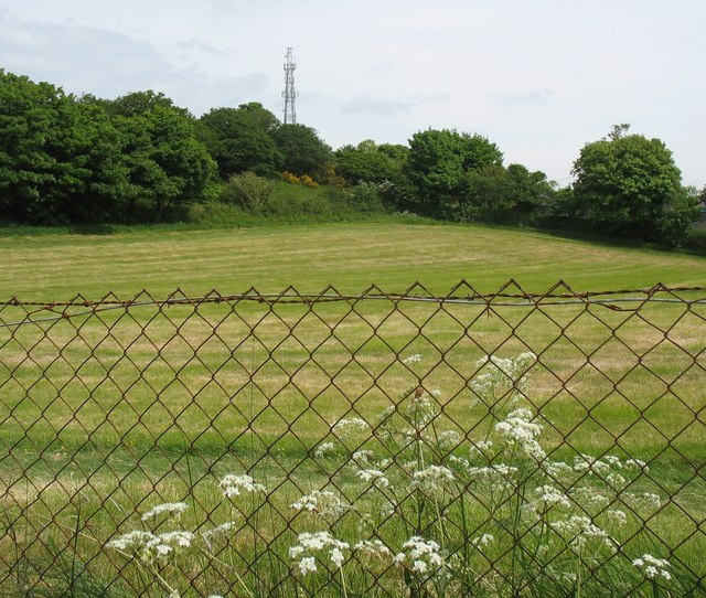Meadow and mast on Bangor Mountain - geograph.org.uk - 812675