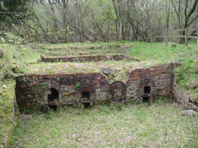 Old brick kiln, Powerstock Common - geograph.org.uk - 94291