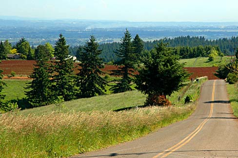 https://upload.wikimedia.org/wikipedia/commons/e/ee/Parrett_Mountain_Road_%28Yamhill_County%2C_Oregon_scenic_images%29_%28yamD0032%29.jpg