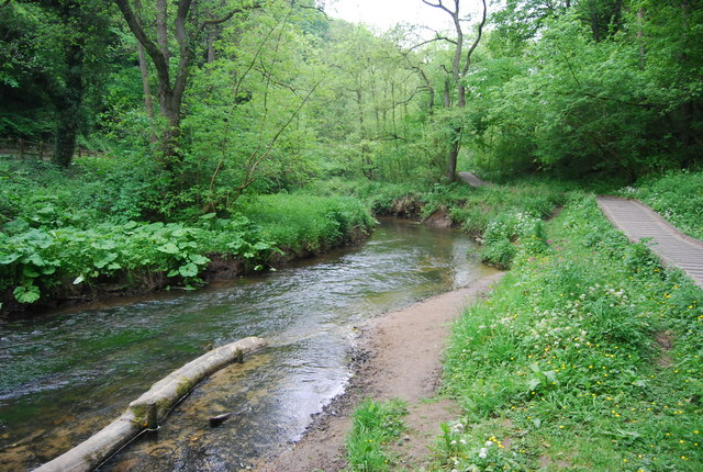 River Derwent, Forge Valley - geograph.org.uk - 1906710