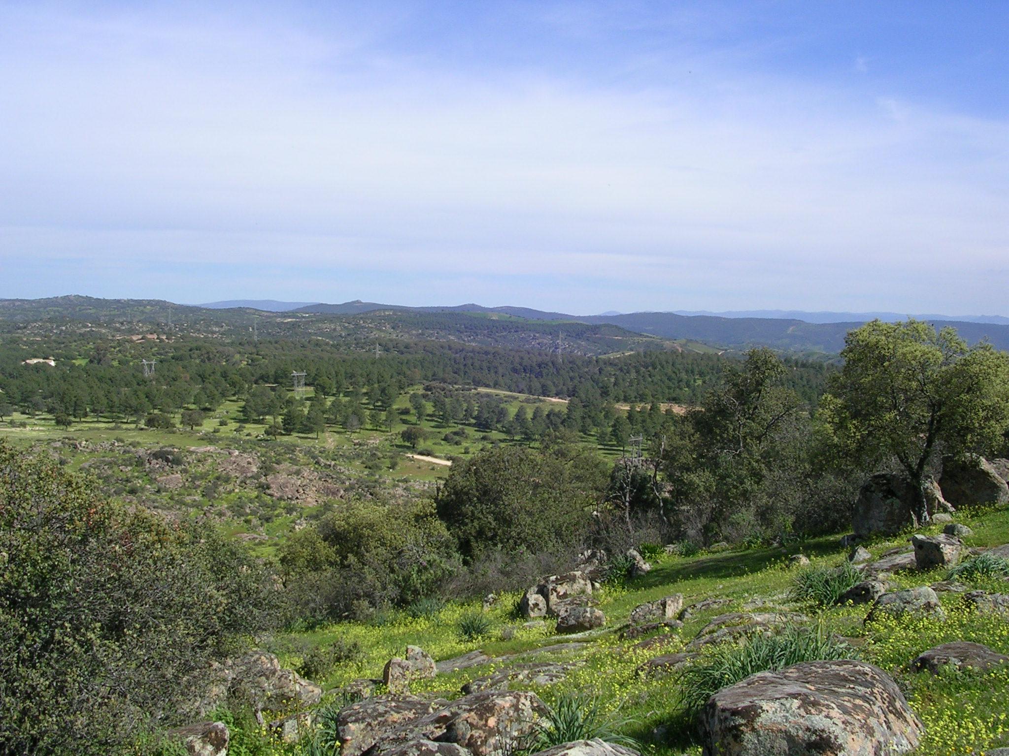 Jaén (provins)