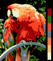 Screen color test Amiga 8colors.png