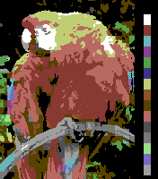Screen color test Commodore64 HighRes.png