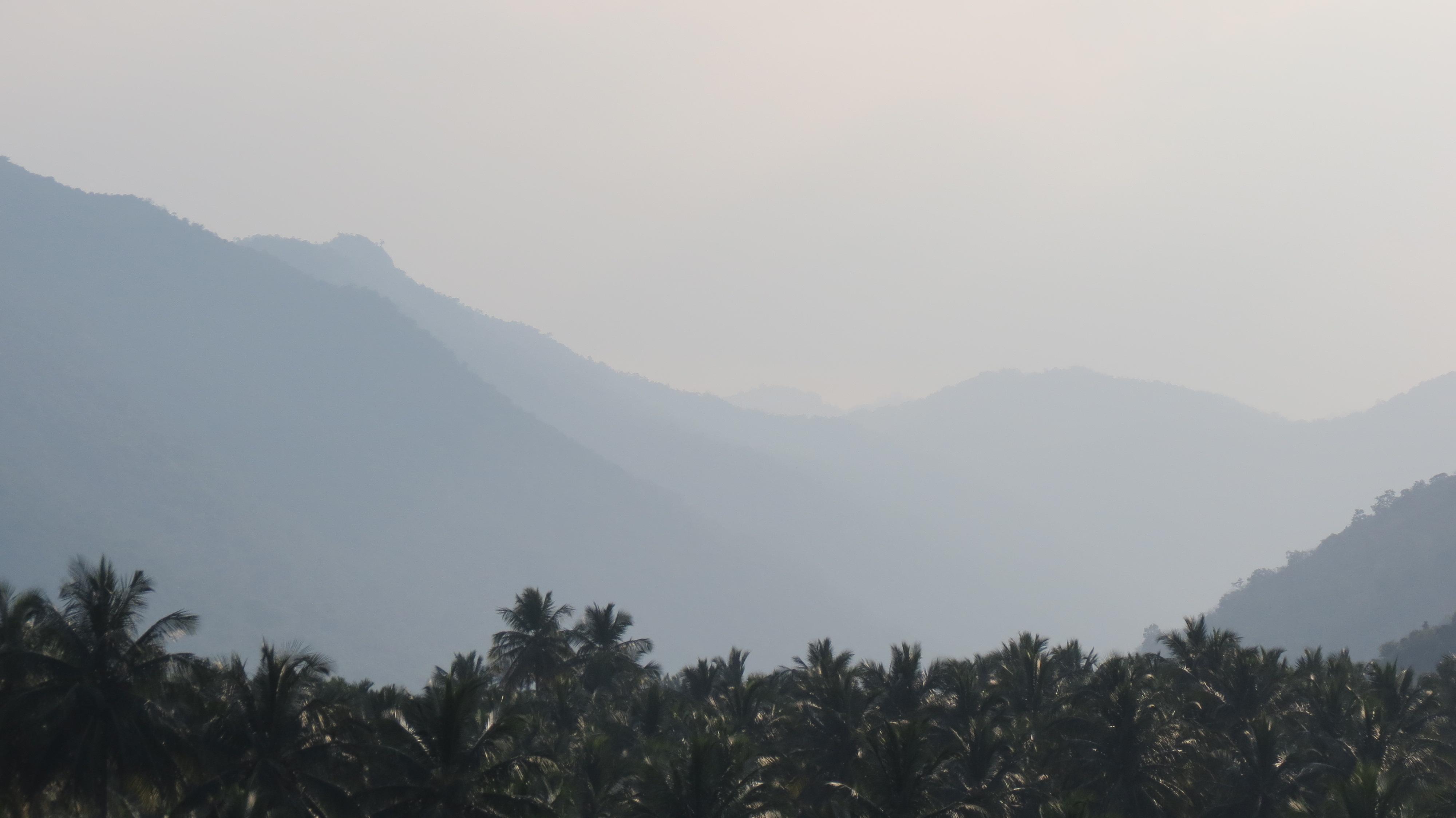 Shevaroy Hills Junglekey In Image