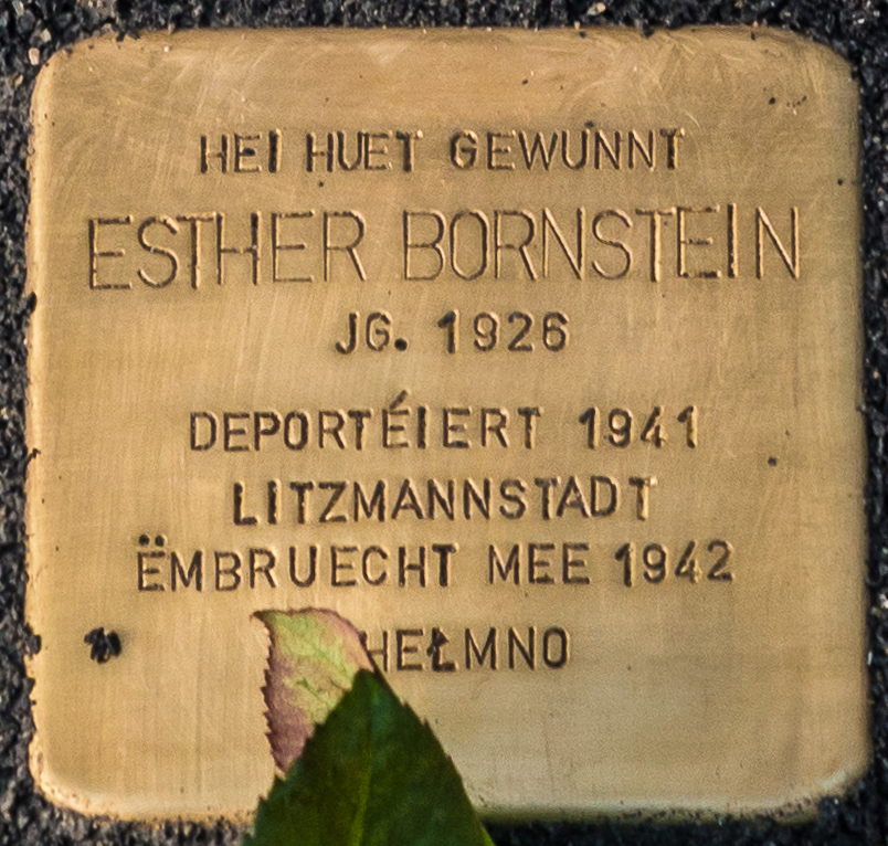 Stolpersteen Esther Bornstein, 96 av Charlotte, Déifferdeng-101.jpg