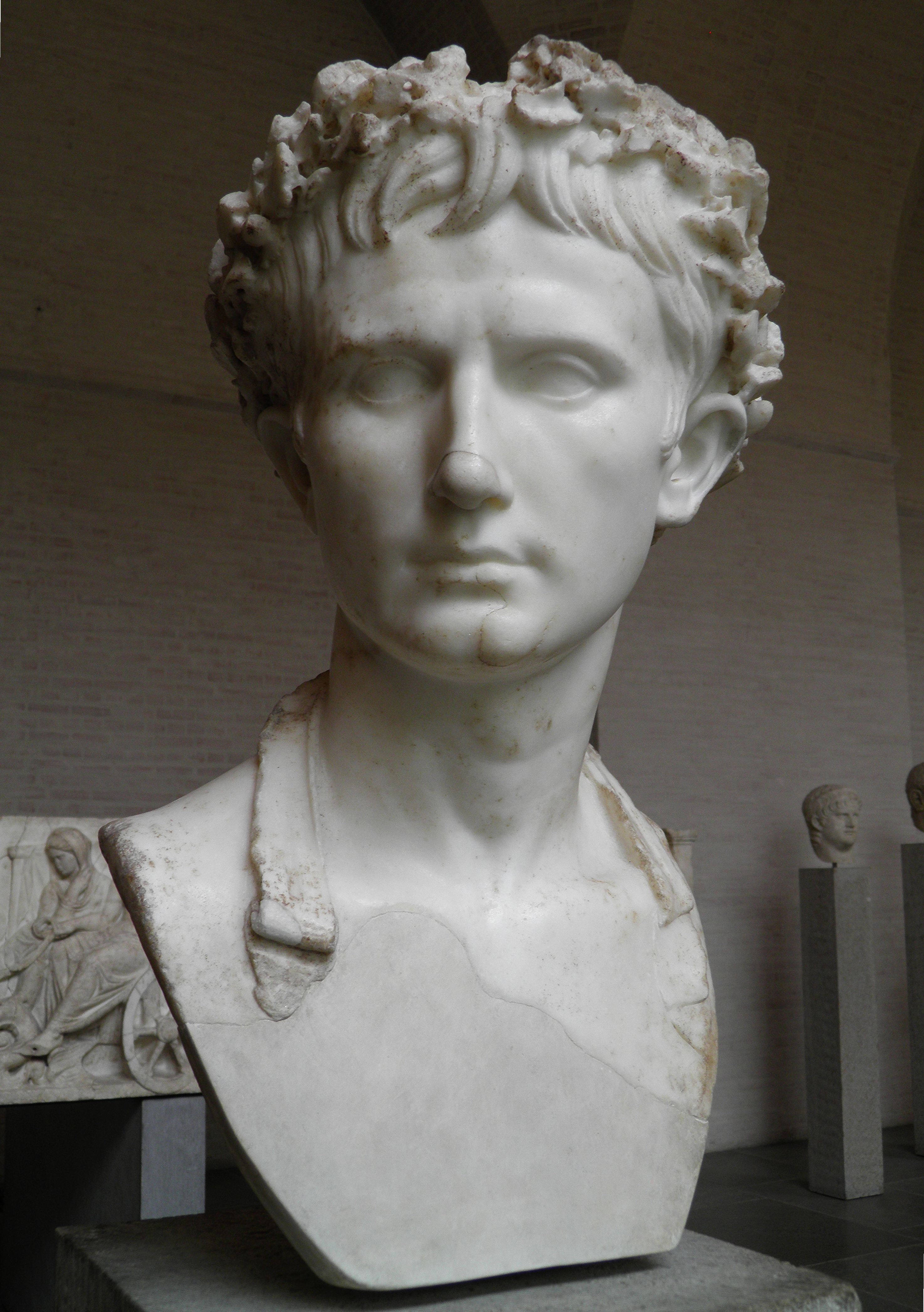 octavian augustus The constitutional reforms of augustus were a series of laws that were enacted by the roman emperor augustus between 30 bc and 2 bc, which transformed the constitution of the roman republic into the constitution of the roman empire.
