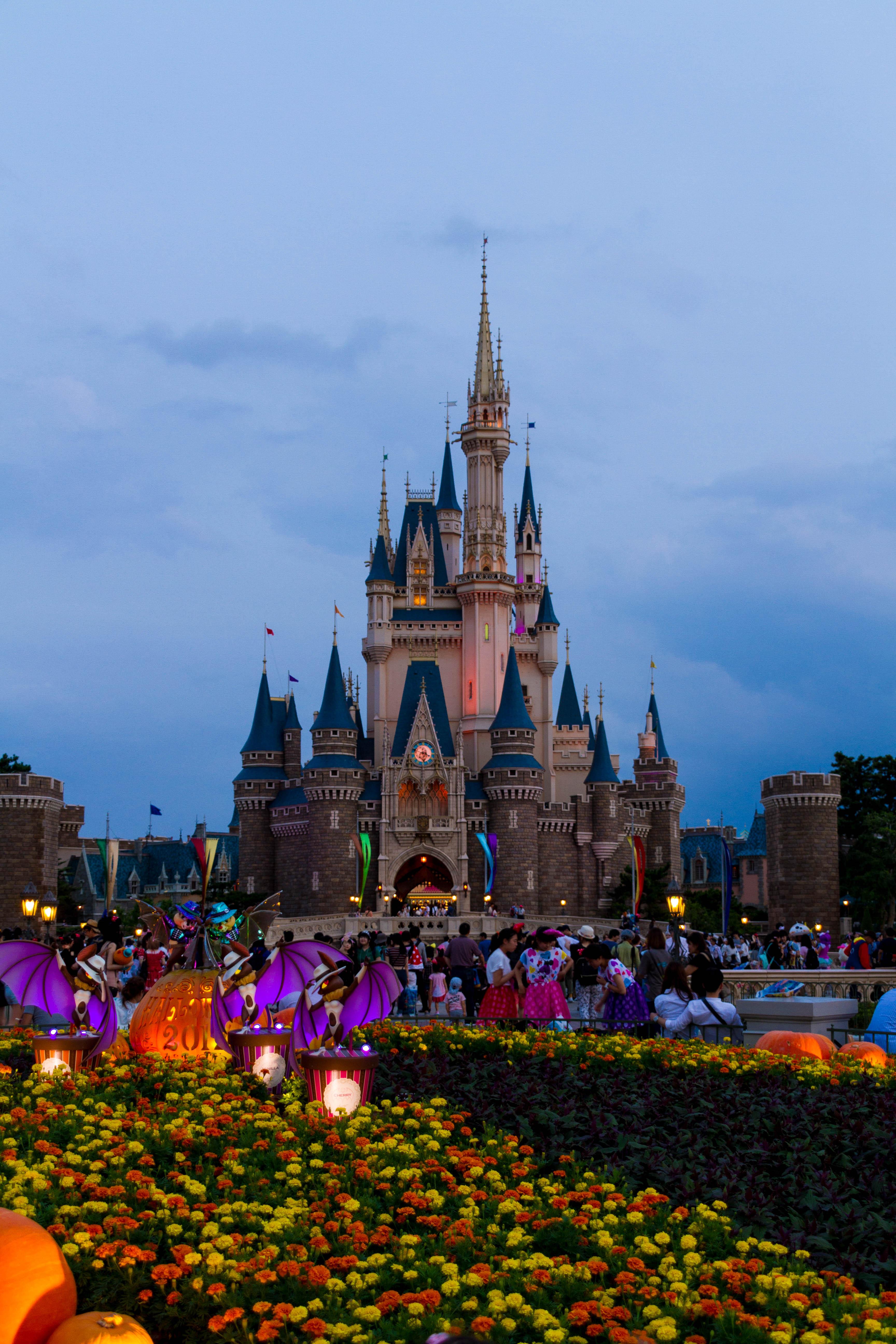 ファイル tokyo disney land cinderella castle jpg wikipedia