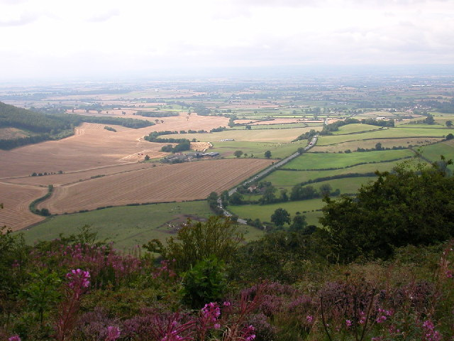 View from Sutton Bank. - geograph.org.uk - 58227