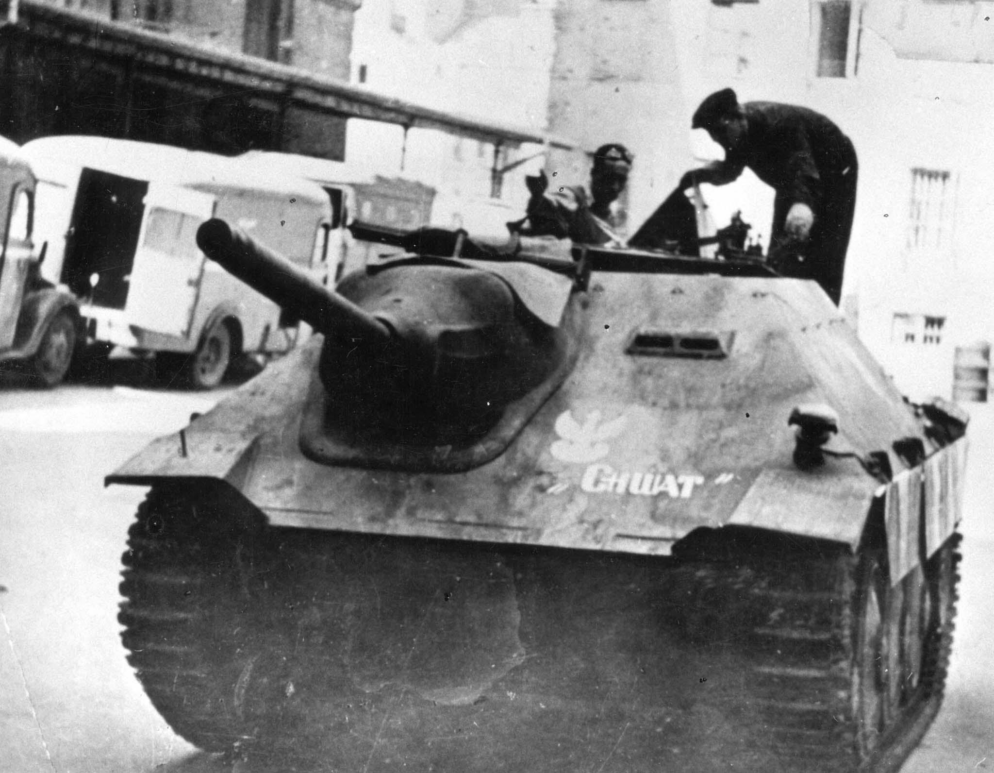 軽駆逐戦車ヘッツァーの画像 p1_18