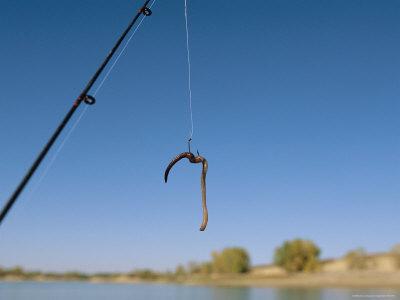 Worm on fishhook.jpg