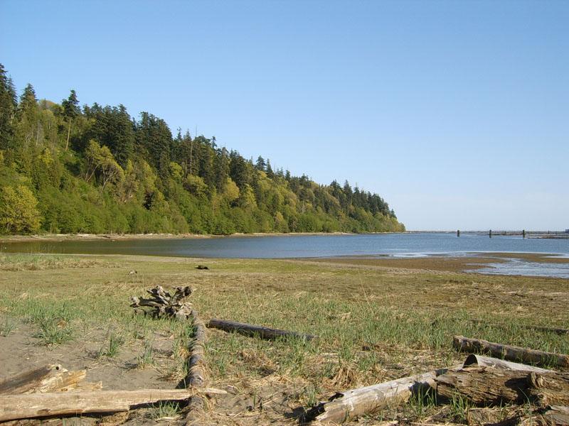 large sandy area