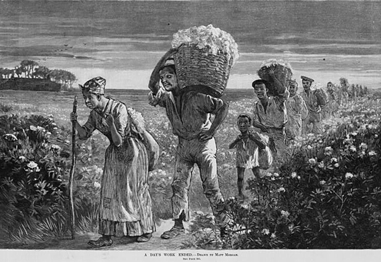 an analysis of the impact of cotton on the united states of america before the civil war World war ii and the american home front  it deals with the impact of the war on african  united states into the war,.