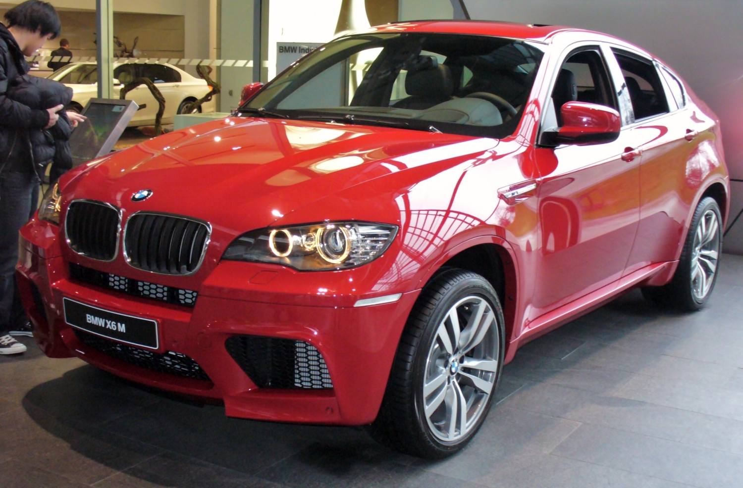 Description bmw x6 m jpg