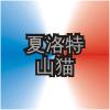 CHA Logo ZhWN.png