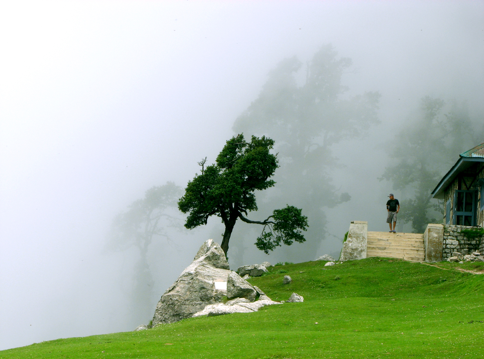 Cloudy Triund, above Mcleodganj, Himachal Pradesh. Photo credit: Wikimedia Commons CC-BY-2.0