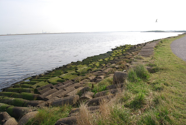 Concrete defences by the Saxon Shore way - geograph.org.uk - 1240179.jpg
