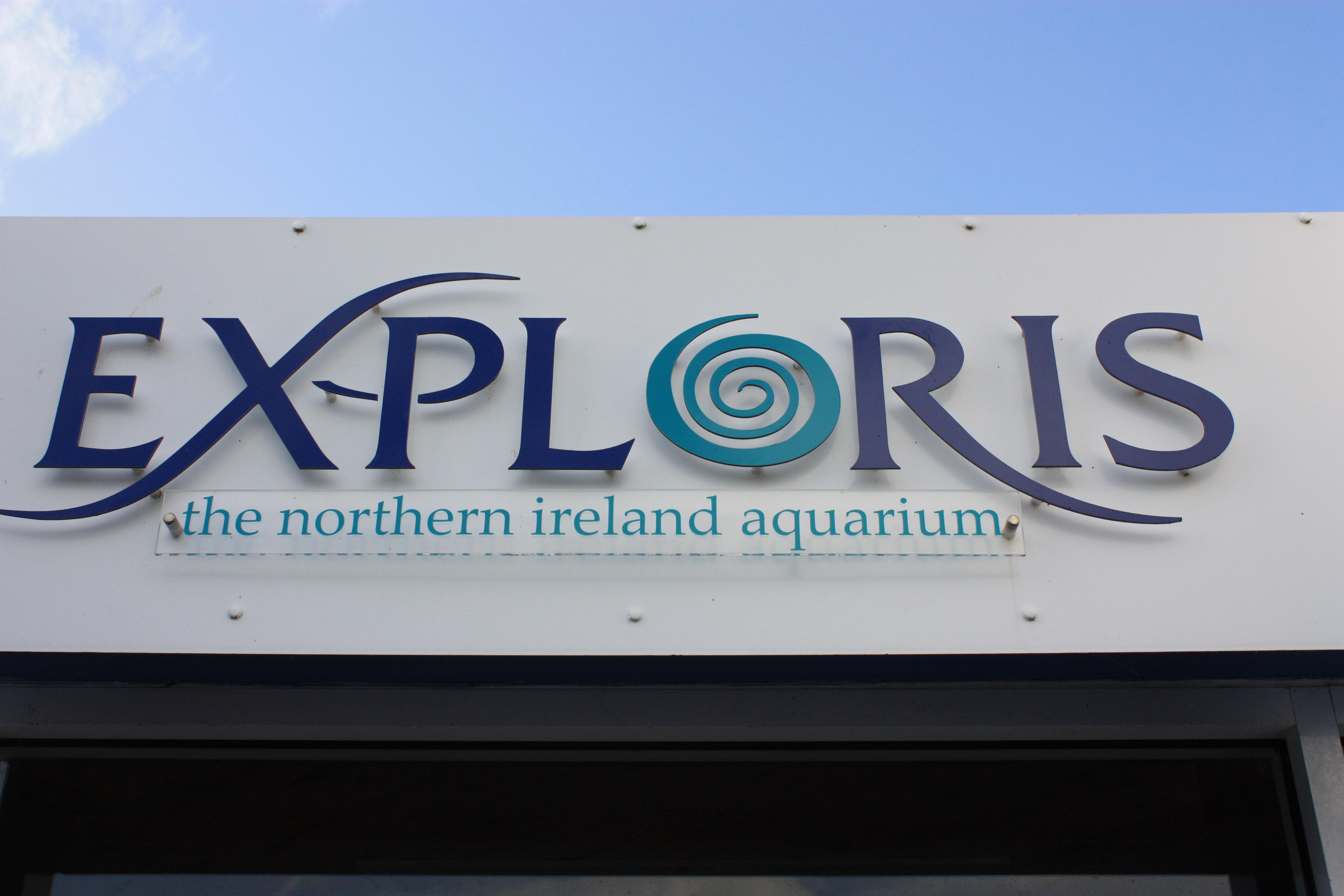 Image Result For Aquarium Northern Ireland