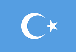 Image result for Uighurs