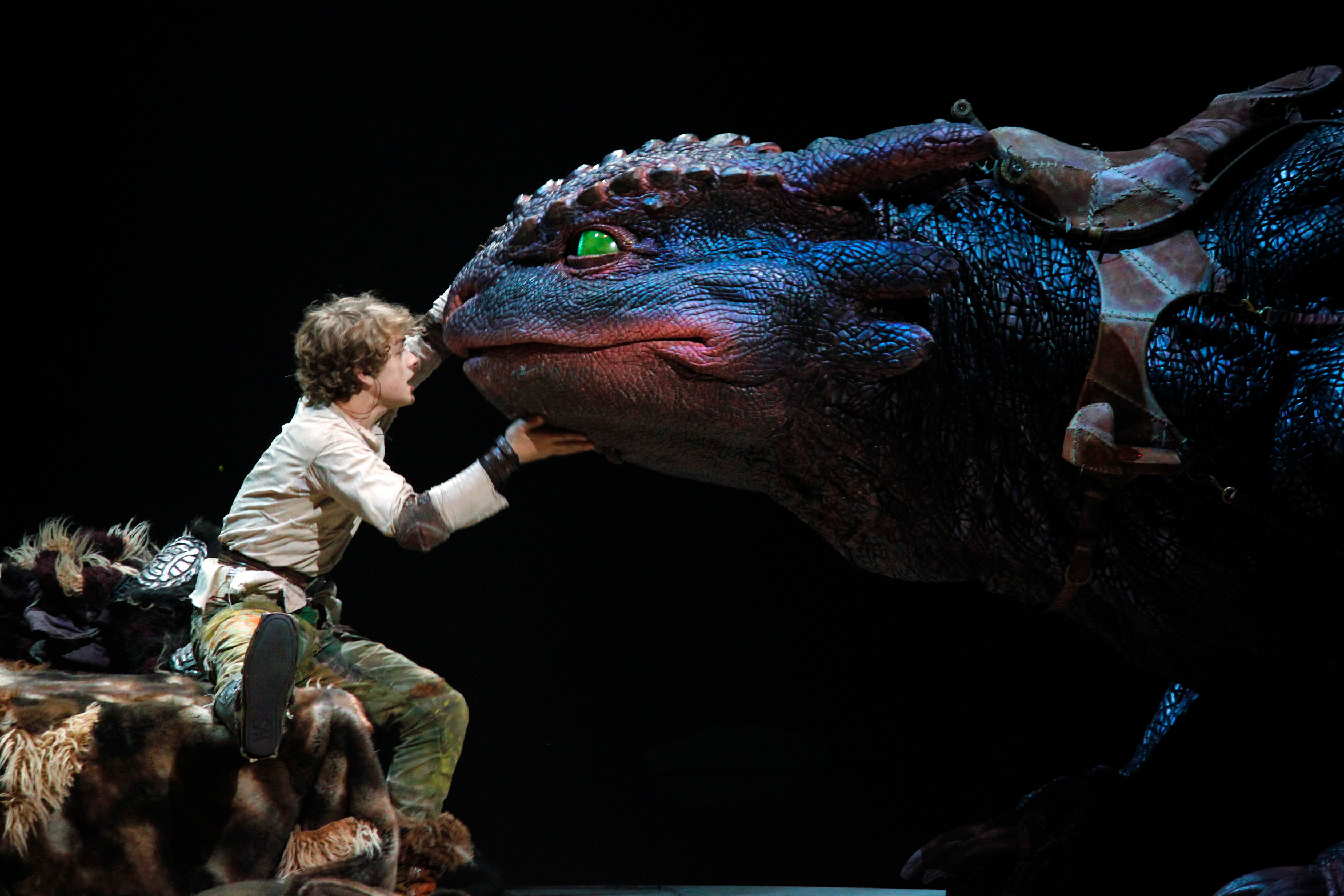 File:Hiccup, Toothless, How to Train Your Dragon Live ... - photo#18
