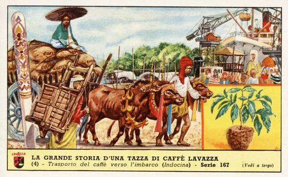 Lavazza Coffee on Amazon