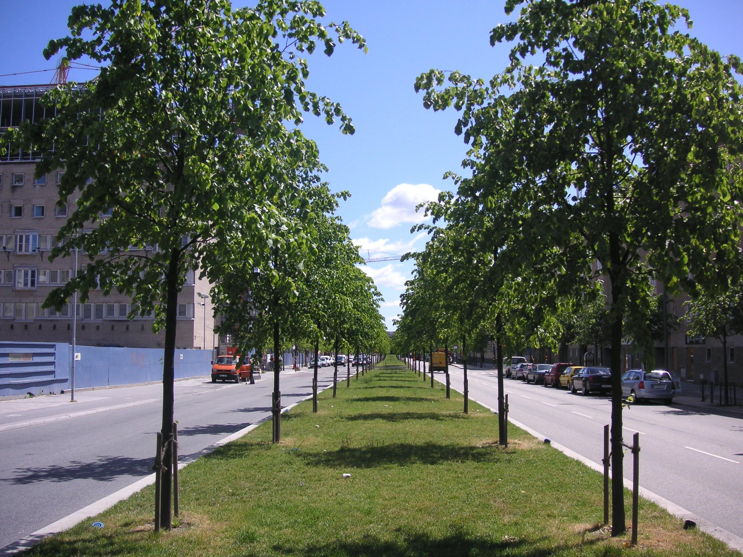lindhagensgatan stockholm
