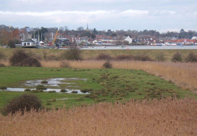 Low lying fields by the Deben - geograph.org.uk - 1183521