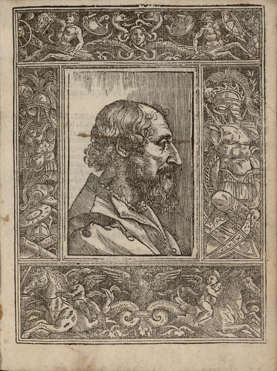 a biography of ludovico ariosto Ludovico ariosto was an italian poet he is best known as the author of the  romance epic orlando furioso (1516.