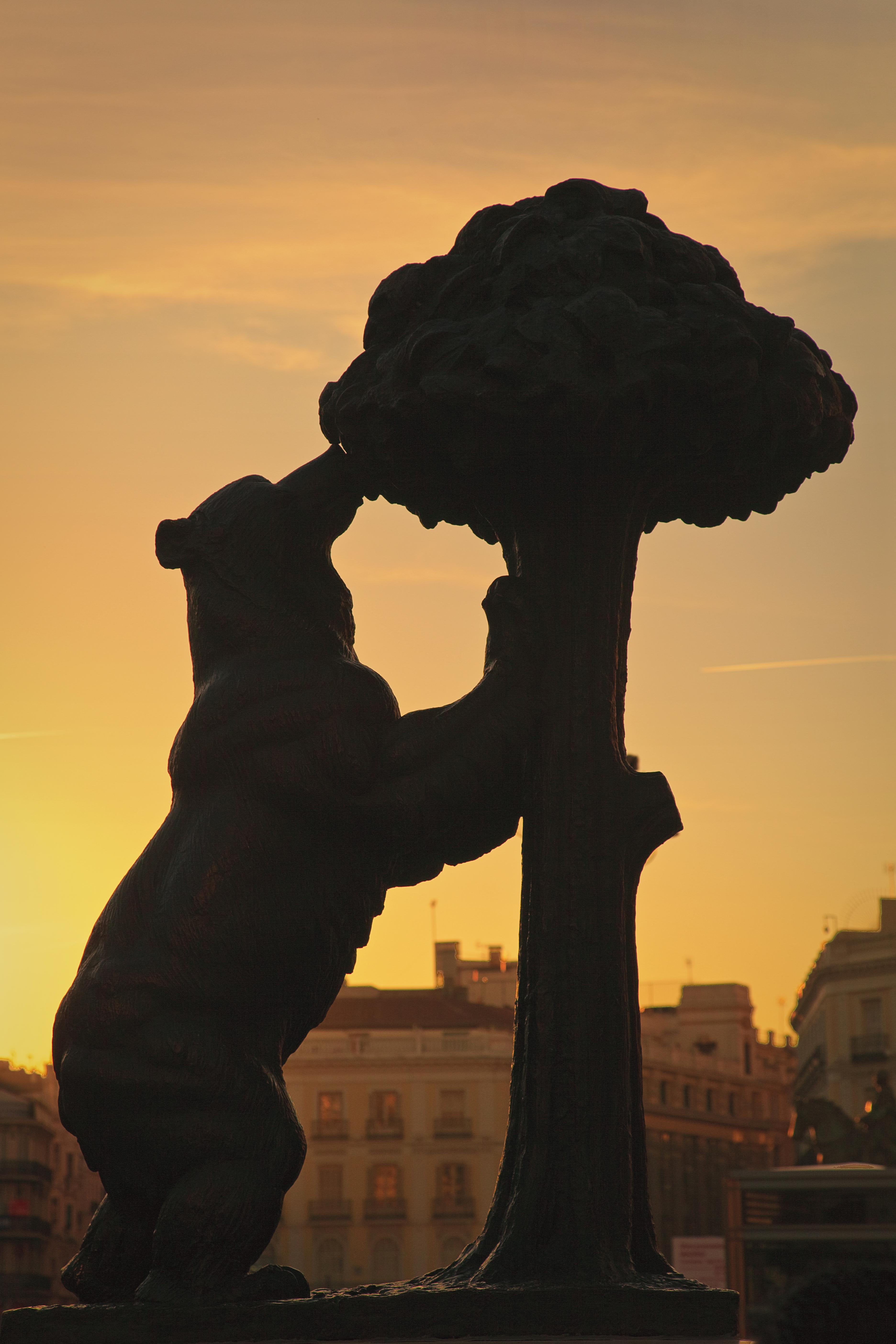 La escultura del oso y el madroño al atardecer
