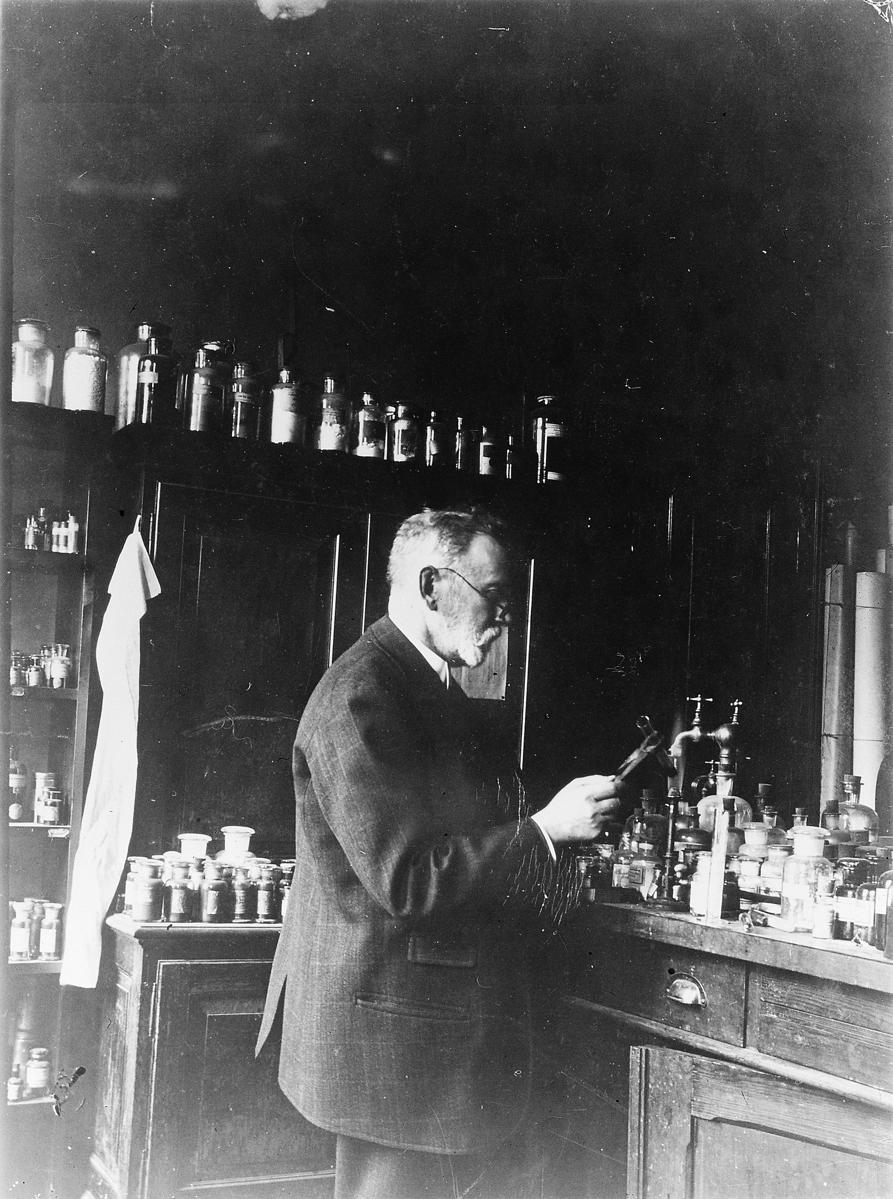 the life and works of paul ehrlich These influences would become quite apparent in ehrlich's famous writings later  on, after he had become an accomplished biologist ehrlich.