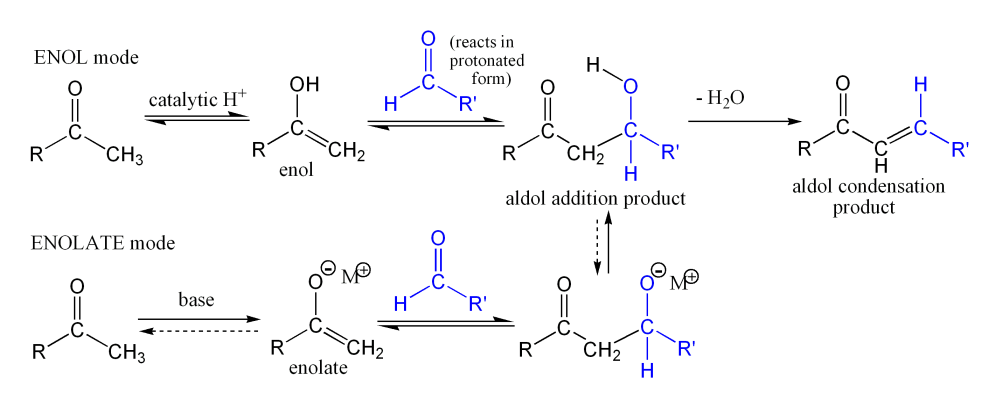 aldol reaction The aldol reaction is an important carbon-carbon bond formation reaction in organic chemistry in its usual form, it involves the nucleophilic addition of a ketone enolate to an aldehyde to form a β-hydroxy ketone, or aldol (aldehyde + alcohol), a structural unit found in many naturally occurring molecules and pharmaceuticals sometimes, the aldol addition product loses a molecule of water.