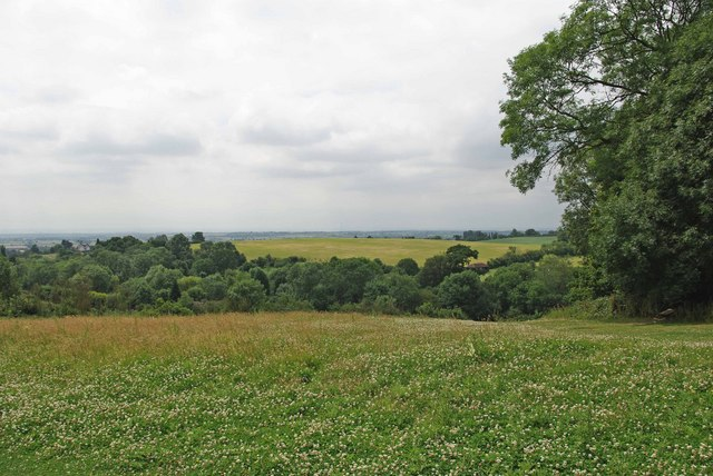 Thorndon Country Park - geograph.org.uk - 1390066