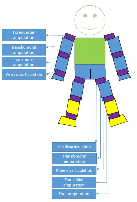 Amputee sports classification - Wikiwand