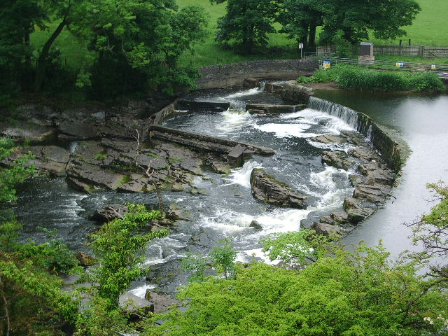 Weir and salmon leap on the River Ribble - geograph.org.uk - 827431